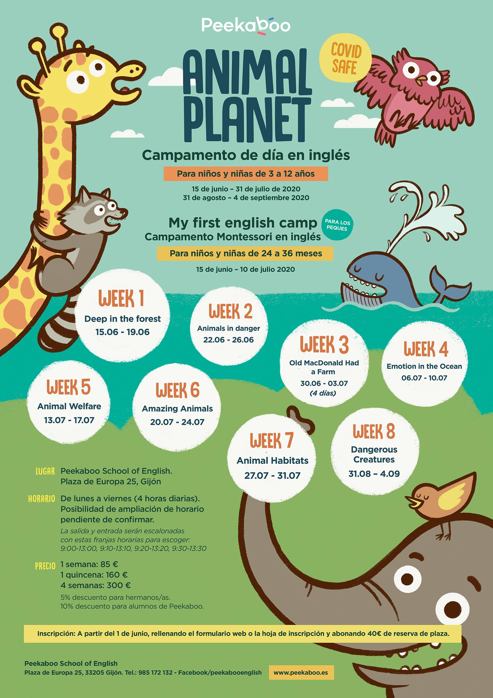 Animal Planet Peekaboo